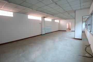 Foto 11 de Usurbil. Polígono Ugaldea. Oficina diáfana, de gran tamaño y muy luminosa.