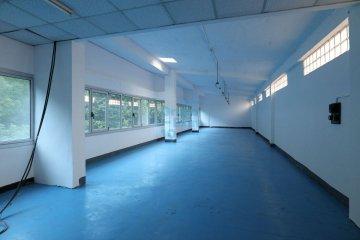 Foto 15 de Usurbil. Polígono Ugaldea. Oficina diáfana, de gran tamaño y muy luminosa.